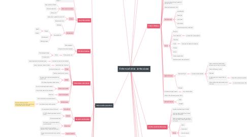 Mind Map: Enterocolitis infecciosa