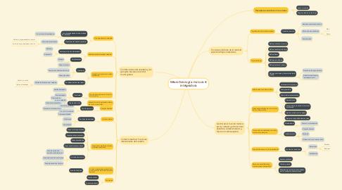 Mind Map: Neurofisiología motora e integradora