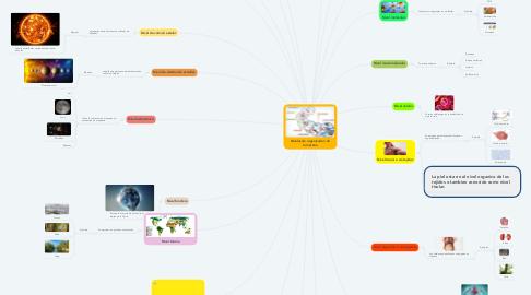 Mind Map: Niveles de organizacion de la materia