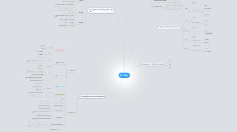 Mind Map: Nei Kong