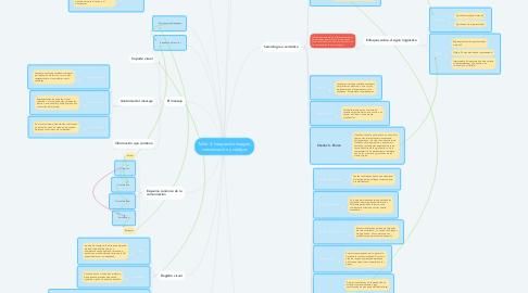 Mind Map: Taller 3. Integrando imagen, comunicación y códigos