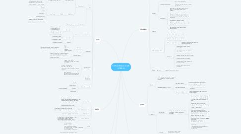 Mind Map: EXPLORACIÓN DE CABEZA