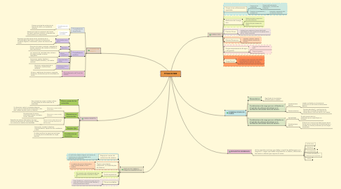 Mind Map: TITULO B NSR
