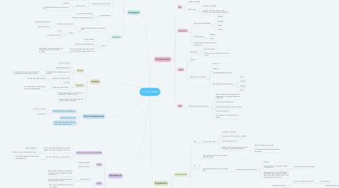Mind Map: Family PikNik
