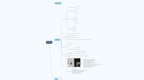 Mind Map: yanzhi ao