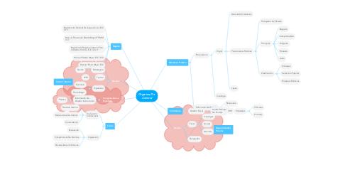 Mind Map: Organos De  Control
