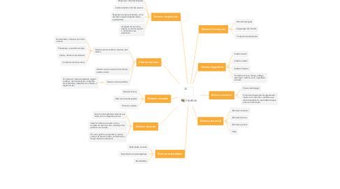 Mind Map: Insetos