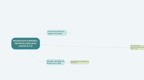 Mind Map: IMUNIDADE HUMORAL: IMUNOGLOBULINAS LINFÓCITO B