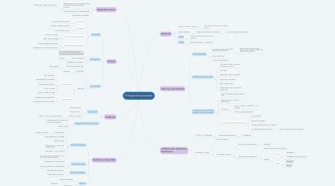 Mind Map: Principio de autonomía
