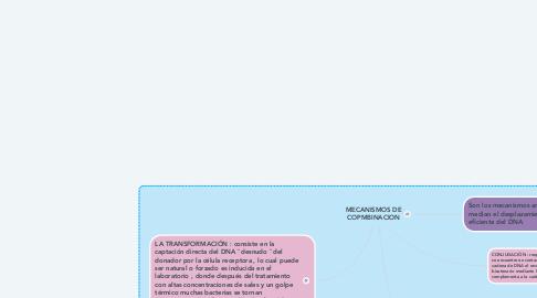 Mind Map: MECANISMOS DE COPMBINACION
