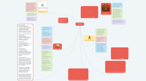 Mind Map: FUNDAMENTOS DE AUDITORIA