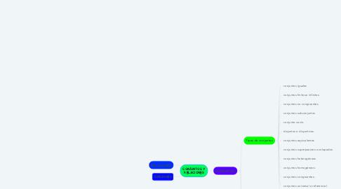 Mind Map: CONJUNTOS Y RELACIONES