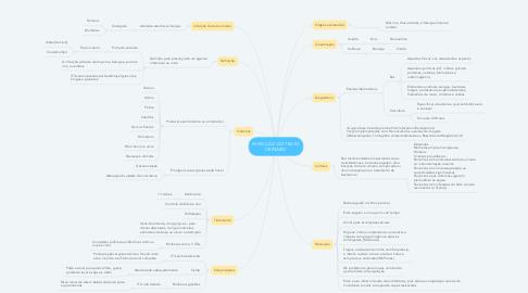 Mind Map: INFECÇÃO DO TRATO URINÁRIO