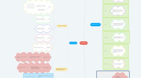 Mind Map: BACTÉRIAS