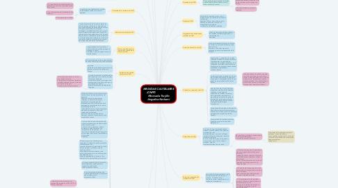Mind Map: MEDIDAS CAUTELARES (CNPP)                   Moncada Trujillo Angelica Nohemi