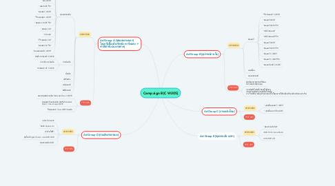 Mind Map: Campaign B[C W205]
