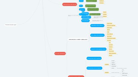 Mind Map: EL CABELLO