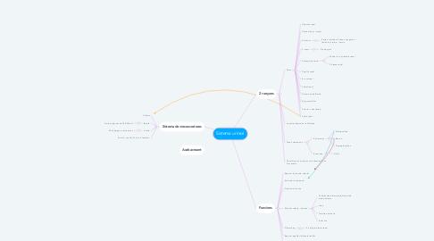 Mind Map: Sistema urinari