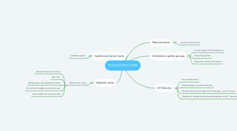 Mind Map: TEAM STRUCTURE