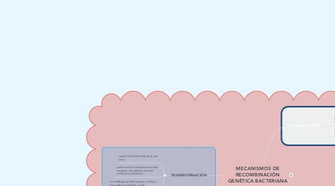 Mind Map: MECANISMOS DE RECOMBINACIÓN GENÉTICA BACTERIANA
