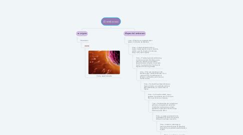 Mind Map: El embarazo