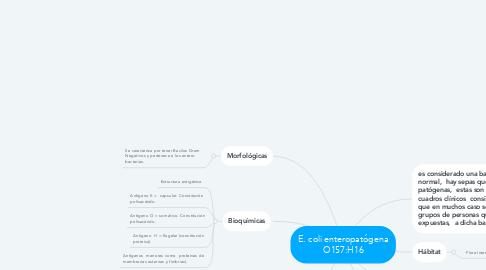 Mind Map: E. coli enteropatógena O157:H16
