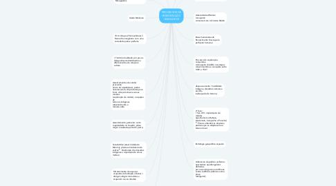 Mind Map: PROCESSOS DE URBANIZAÇÃO  UNIDADE 03