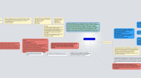 Mind Map: Evaluación Fetal Intraparto