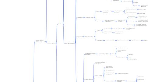 Mind Map: ANATOMIA DEL SISTEMA NERVIOSO