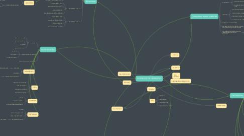 Mind Map: MODELOS DE LIDERAZGO
