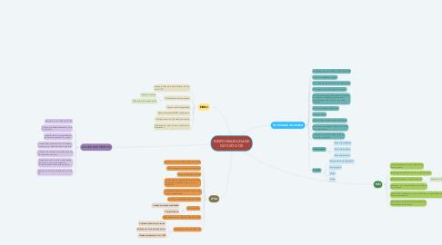 Mind Map: RESPONSABILIDADE DOS SÓCIOS