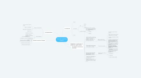 Mind Map: Fases de la política pública