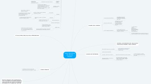 Mind Map: CARACTERISTICAS DEL RECIEN NACIDO