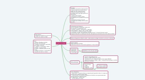 Mind Map: ESTADOS NACIONAIS