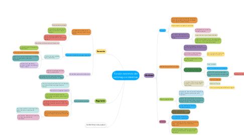 Mind Map: Función secretora del estómago e intestinos