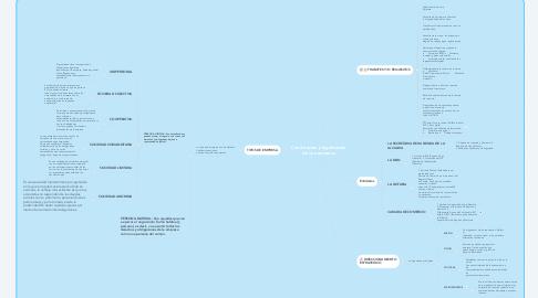 Mind Map: Constitución y legalización de una empresa