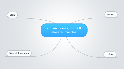 Mind Map: 2: Skin, bones, joints & skeletal muscles
