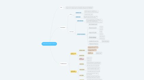 Mind Map: DISCAPACIDAD VISUAL