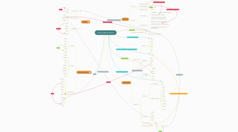 Mind Map: Sofía Gutiérrez Pereira