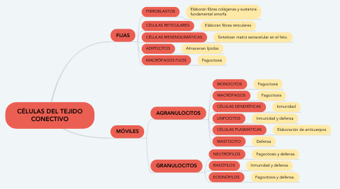 Mind Map: CÉLULAS DEL TEJIDO CONECTIVO
