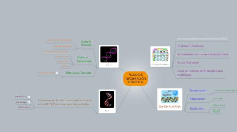Mind Map: FLUJO DE INFORMACIÓN GENÉTICA