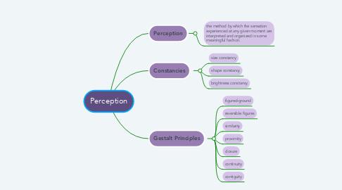 Mind Map: Perception