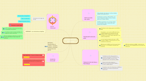 Mind Map: INFORMACION GENETICA