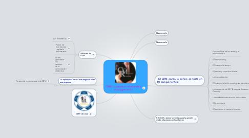 Mind Map: CRM ( customer relationship management )
