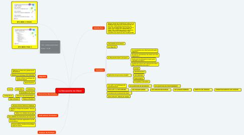 Mind Map: La Découverte du Client