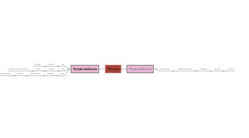 Mind Map: Pâncreas