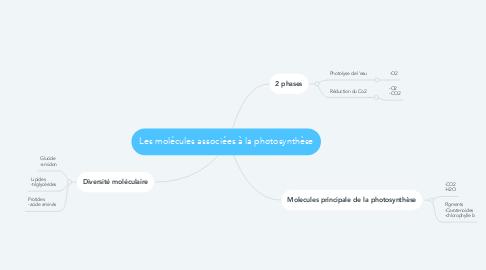Mind Map: Les molécules associées à la photosynthèse