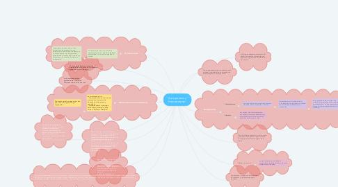 """Mind Map: """" Autopoiesis y """" Homeostasis"""""""