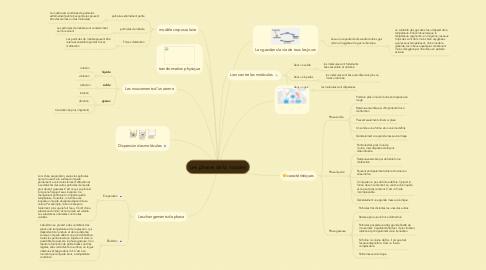 Mind Map: Les phases de la matière