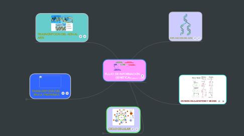 Mind Map: FLUJO DE INFORMACION GENETICA